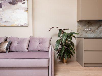 Mieszkanie zakupione z sopockiego skupu mieszkań. Na zdjęciu widać kanapę, szafę, obraz oraz roślinę w doniczce.